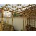Бамбуковый ствол,  Ø2-3см, L 2м, черный, СОРТ 2 – фото 10