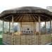 Бамбуковый ствол,  Ø2-3см, L 2м, декоративный – фото 7