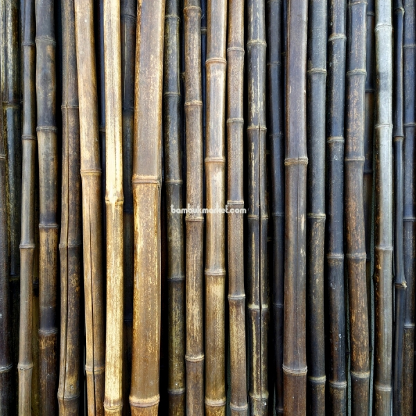 Бамбуковый ствол,  Ø2-3см, L 2м, черный, СОРТ 2 – фото 4
