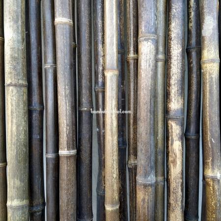Бамбуковый ствол,  Ø3-4см, L 3м, черный, СОРТ 2 - фото 1
