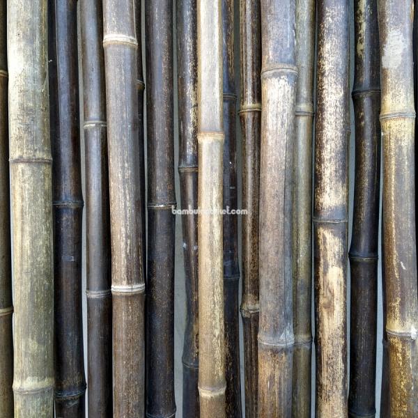 Бамбуковый ствол,  Ø3-4см, L 3м, черный, СОРТ 2 – фото 5
