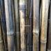 Бамбуковый ствол,  Ø3-4см, L 3м, черный, СОРТ 2 – фото 8