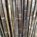 Бамбуковый ствол,  Ø4-5см, L 3м, черный, СОРТ 2 – фото 8