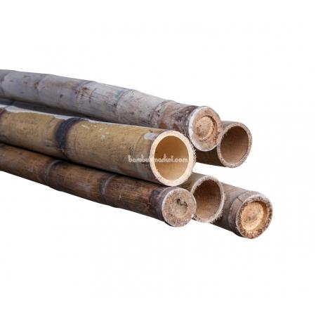 Бамбуковый ствол,  Ø5-6см, L 3м, обожженный, СОРТ 2 - фото 1