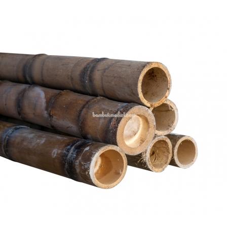 Бамбуковый ствол,  Ø7-8см, L 3м, обожженный, СОРТ 2 - фото 1