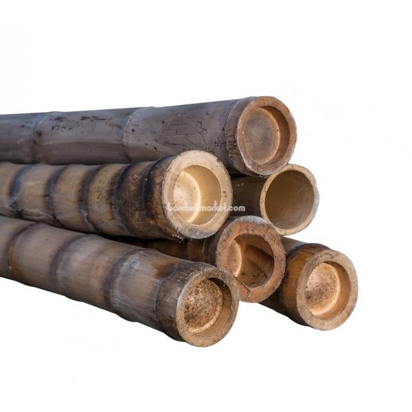 Бамбуковый ствол,  Ø9-10см, L 3м, обожженный, СОРТ 2 – фото 11