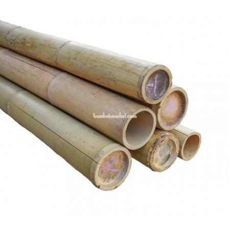 Бамбуковый ствол, Ø10-11см, L 3м, натуральный - фото 1