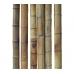 Бамбуковый ствол, Ø11-12см, L 3м, натуральный – фото 3