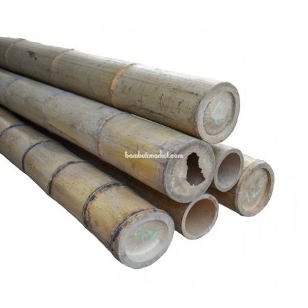 Бамбуковый ствол, Ø12-12,5см, L 3м, натуральный - фото 1