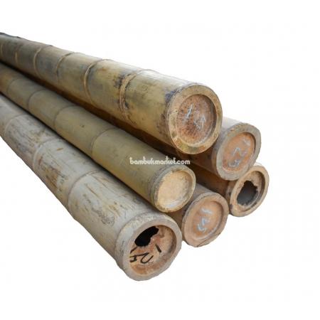 Бамбуковый ствол, Ø12,5-13см, L 3м, натуральный - фото 1