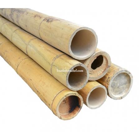 Бамбуковый ствол, Ø15-16см, L 3м, натуральный - фото 1