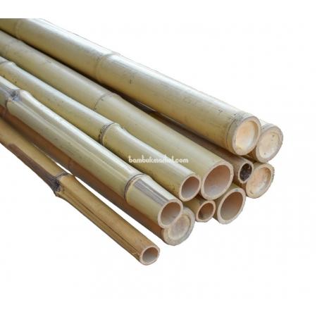 Бамбуковый ствол,  Ø4-5см, L 3м, натуральный - фото 1