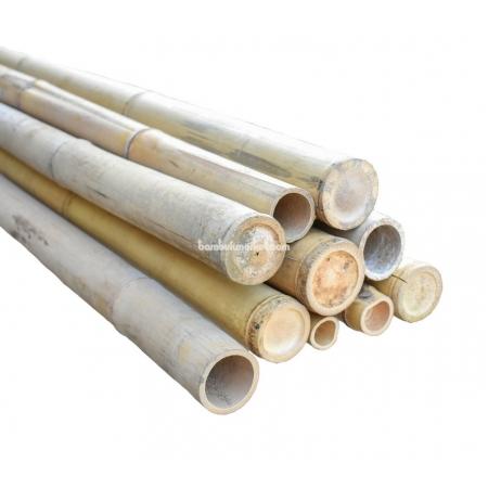 Бамбуковый ствол,  Ø5-6см, L 3м, натуральный - фото 1