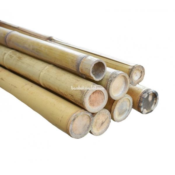 Бамбуковый ствол,  Ø6-7см, L 3м, натуральный – фото 14