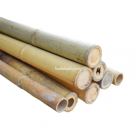 Бамбуковый ствол,  Ø7-7,5см, L 3м, натуральный - фото 1