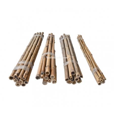 Бамбуковый ствол для подвязки, Øдо 30мм, L 1,0м, СОРТ 2 - фото 1