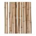 Бамбуковый ствол,  Ø2-3см, L 2м, декоративный – фото 3