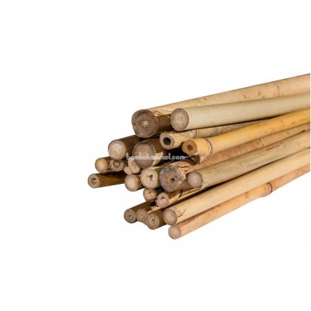 Бамбуковый ствол для подвязки, Ø10-12мм, L 1,05м - фото 1
