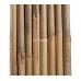 Бамбуковый ствол для подвязки, Ø16-18мм, L 1,5м – фото 2