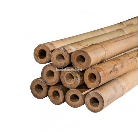 Бамбуковый ствол для подвязки, Ø20-22мм, L 2,1м - фото 1