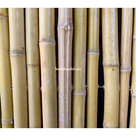 Бамбуковый забор, 3,0х1,0м - фото 1